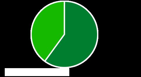 新卒・中途割合40% 60%